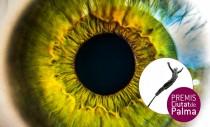 PREMIO CIUTAT DE PALMA ANTONI GELABERT DE ARTES VISUALES 2021